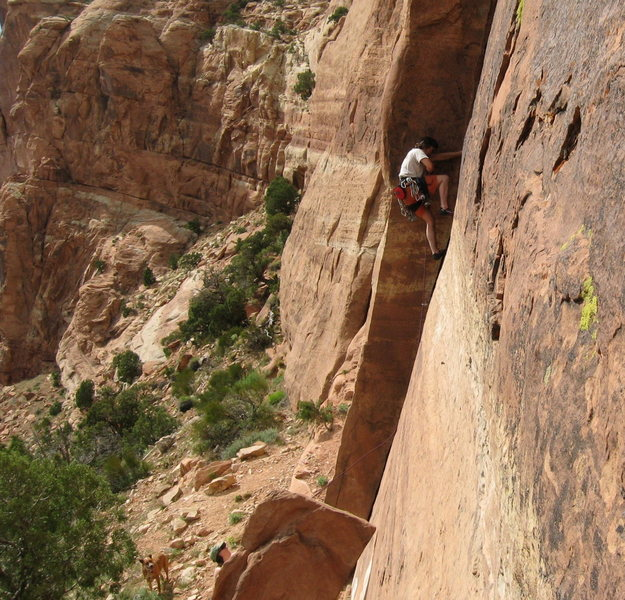 Rock Climbing Photo: The Captain leading D1 on the Slabs.