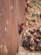 Rock Climbing Photo: Toby slotting rings. Obligatory Alf appearance in ...