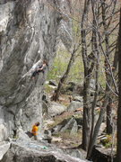 Rock Climbing Photo: Charlotte Majerczyk making the 3rd clip on Two Sha...