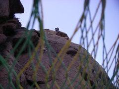 Rock Climbing Photo: Setting up self-rap from 2-bolt anchor.