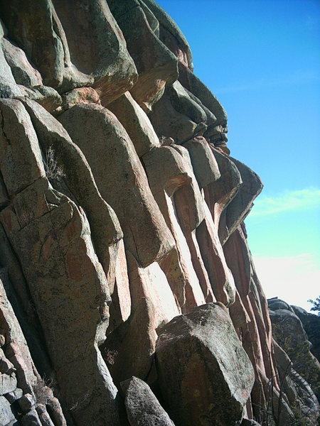 Rock Climbing Photo: Turkey Tail.