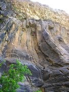 Rock Climbing Photo: Ahh, Black and Tan.