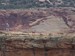 Rock Climbing Photo: Just another butt shot.