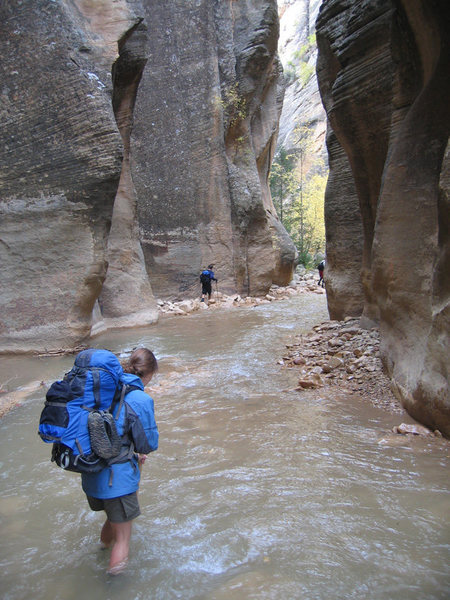 Zion Narrows - day 1 (from top to bottom)
