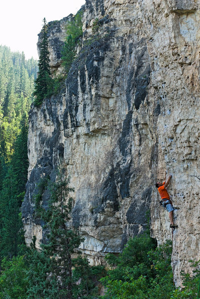 Rock Climbing Photo: Sasha Cherry on Yippey-Kay-Yay