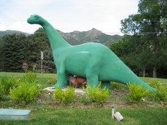 Rock Climbing Photo: That's a sexy dinosaur!