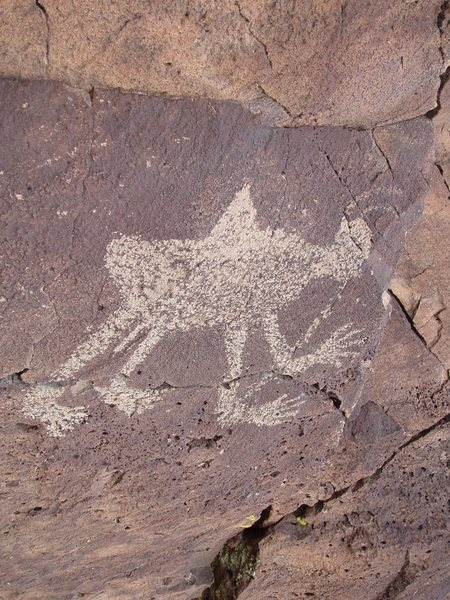 Rock Climbing Photo: White Rock Petroglyph