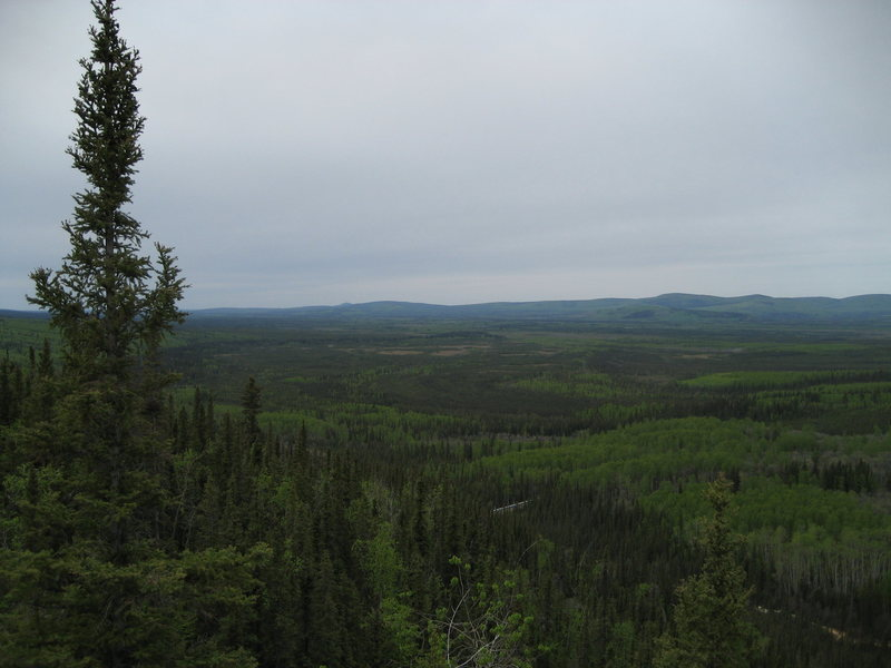 The view from the top of the crag looking West and into the Tatalina river drainage. Notice the Alaskan Pipeline snaking through the trees.