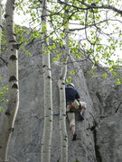 Rock Climbing Photo: Craig Robertson trying the crux sequence on Peril.