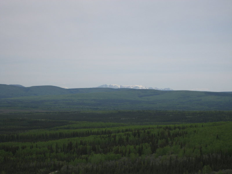 From the top of Rubble Pile and a Latitude of 65 degrees the Ray Mountains (with elevation points topping out over 5000 feet) can be seen far to the North.