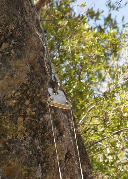 Top Rope Sheer Reduction Block.  Use the p-cord to pull your rope through the block to climb.  Use your rope to pull the p-cord back through when you're done.  See the Camp Eagle Climbing guide for a tutorial.