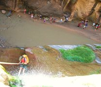 Rock Climbing Photo: Famed Zion Narrows rappel. Always an audience, the...