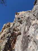Rock Climbing Photo: Sonya makes the 5th clip on her way up Lullabye Le...