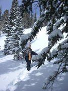Rock Climbing Photo: dan hiking up in white pine- on way to ski scottie...
