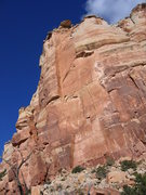 Rock Climbing Photo: Under the reaches of the of the diving board.  A t...