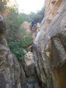 Rock Climbing Photo: The Cat coming down the boulder problem in the bea...