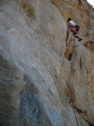 Rock Climbing Photo: Just past the crux on The Plague (5.10b), Riversid...