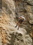 Rock Climbing Photo: Rapping Cornflake Crack.  I left gear there that c...
