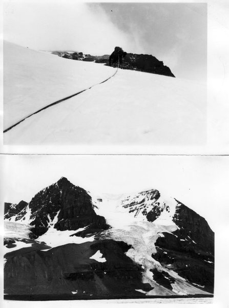 """Skyladder: Mt. Andromeda 1974<br> <br> Our Salewa screws wouldn't bite in the porous ice so we ran out every pitch """"anchored"""" by boot axe belays or warthogs hammered into shale. Patey's definition of a roped party as """"several men falling simultaneously"""" came to mind. Often."""