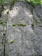 Rock Climbing Photo: Acid Jazz V2 - Avoid the ledges (left and right) o...