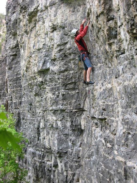 Rock Climbing Photo: Robert MacKinnon leading Les is More.