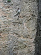 Rock Climbing Photo:  Great sustained climbing that makes you think out...