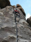 Rock Climbing Photo: Nearing the top of Tossed Green (5.10a), Joshua Tr...