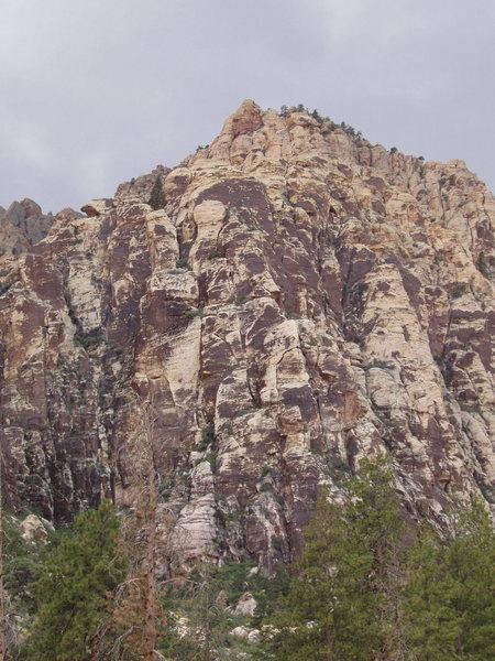 Rock Climbing Photo: Eagle profile on Frigid Air Buttress