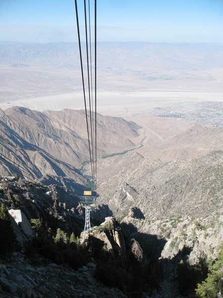 The view from the Tram, San Jacinto Mtns