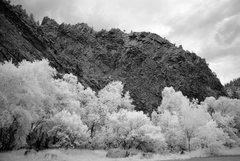 Rock Climbing Photo: Rotwand in infrared converted to B&W. Photo by: Fr...