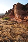 Rock Climbing Photo: Chuckawalla in June