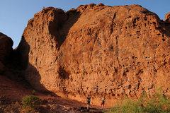 Rock Climbing Photo: Chuckawalla
