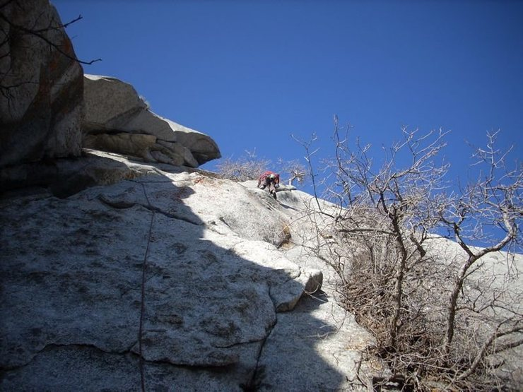 Rock Climbing Photo: First ascent of Zesty 5.8+ After a lot of cleaning...