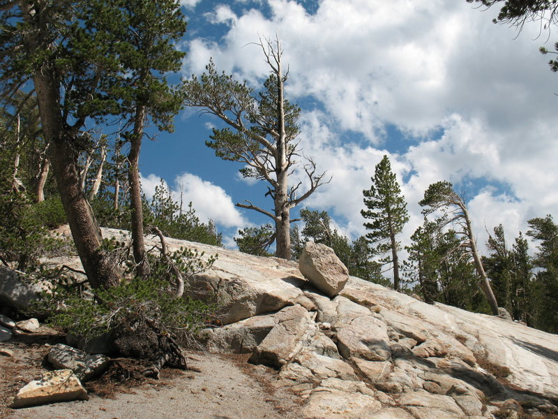 Typical scenery along the trail to Crystal Crag, Mammoth Lakes Basin
