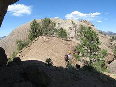 Rock Climbing Photo: BRCM summit plateau.  Rappel bolts are on the NE c...