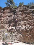 Rock Climbing Photo: Cody midway up Black Sheep June 13, 2008.