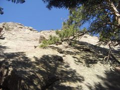 Start of the south arete, left of a large pine tree...the lowest point on the Flatironette.