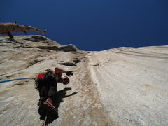 Rock Climbing Photo: Tim Triche starting up the bolt ladder at about 7p...