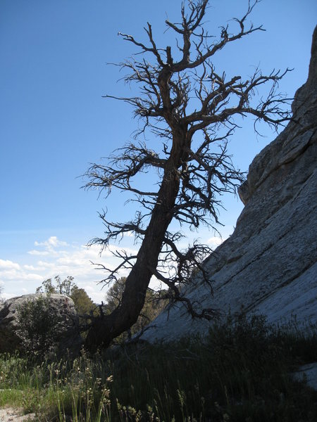 Rock Climbing Photo: Looking south