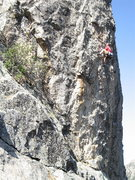 Rock Climbing Photo: Vince Bates just might get the onsight of Bobbin'....