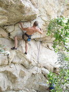 Rock Climbing Photo: This big dog is gettin' off the porch for the seco...