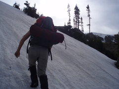 Rock Climbing Photo: Almost there...about 10,850ft.  She's not happy......