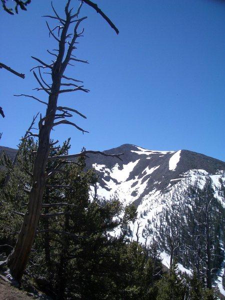 Mt Humphrey's from far below.
