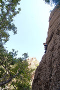 Rock Climbing Photo: Kathy Boussina is rewarded with an convenient top-...