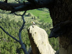 Rock Climbing Photo: Unknown climber on top of Bookmark Pinnacle.  Lump...