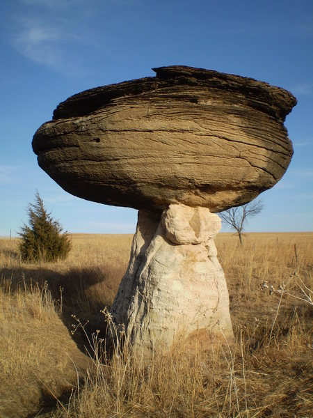 Funny looking mushroom shaped formations in the middle of Kansas