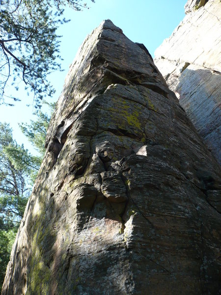 Dakota Farms Cheese <br> 5.11a