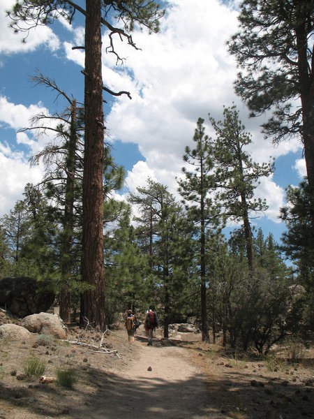 Hiking the trail from the Central Pinnacles to Lost Orbit Rock, Holcomb Valley Pinnacles