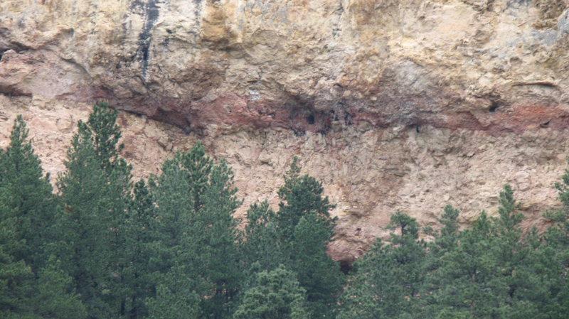 Black Hills Limestone.