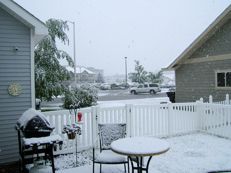 A fine summer day in the Treasure State.  June 10, 2008 in Kalispell.